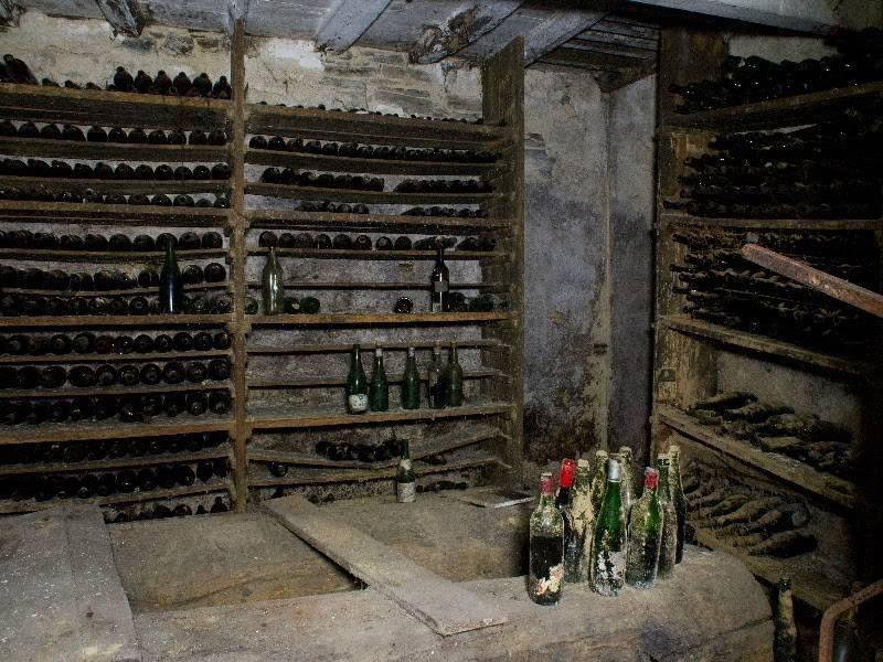 Wijn bewaren of drinken - Wijnkelder ...